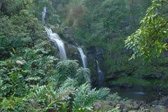 Cachoeira de Kipahulu, Havaí Fotografia de Stock