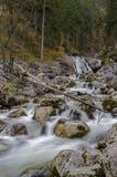 Cachoeira de Kuhflucht Foto de Stock