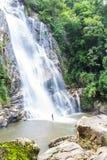Cachoeira de Mae Tia, parque nacional do pulmão de Ob em Chiangmai Tailândia Imagem de Stock