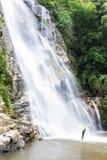 Cachoeira de Mae Tia, parque nacional do pulmão de Ob em Chiangmai Tailândia Imagens de Stock Royalty Free