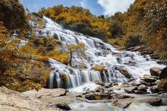 Cachoeira de Mae Ya no parque nacional de Doi Inthanon, Chiang Mai, tailandês Imagens de Stock