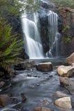 Cachoeira de McKenzie Fotos de Stock Royalty Free