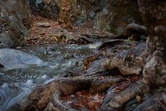 Cachoeira de Millomeris Fotografia de Stock Royalty Free