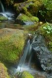 Cachoeira de Miniture Fotos de Stock Royalty Free