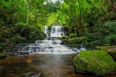 A cachoeira de Mun-Dang com flor do boca-de-lobo Fotografia de Stock Royalty Free