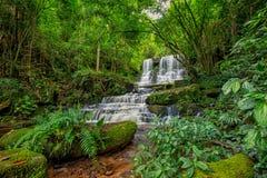 A cachoeira de Mun-Dang com flor do boca-de-lobo Fotos de Stock Royalty Free