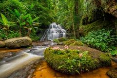 A cachoeira de Mun-Dang com flor do boca-de-lobo Imagens de Stock Royalty Free
