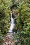 Cachoeira de Nova Zelândia na floresta imagens de stock royalty free