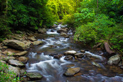 Cachoeira de Palau em Tailândia Fotografia de Stock Royalty Free