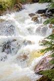 Cachoeira de pressa com grama luxúria em Rocky Mountain National Park foto de stock