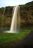 Cachoeira de Seljalandsfoss imagem de stock royalty free
