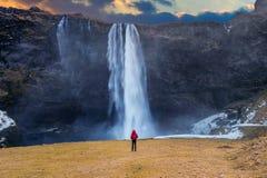 Cachoeira de Seljalandsfoss em Islândia O indivíduo no revestimento vermelho olha a cachoeira de Seljalandsfoss fotografia de stock