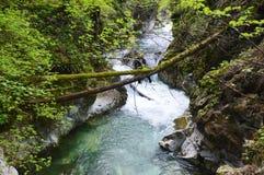 Cachoeira de Stanghe, Trentino Alto Adige, Itália Imagens de Stock Royalty Free