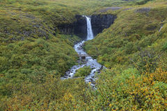 Cachoeira de Svartifoss Foto de Stock