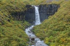 Cachoeira de Svartifoss Fotografia de Stock Royalty Free
