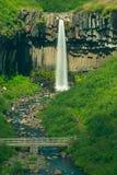 Cachoeira de Svartifoss Imagens de Stock