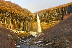 Cachoeira de Svartifoss, Islândia Imagem de Stock Royalty Free