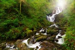 Cachoeira de Torc no parque nacional de Killarney Foto de Stock Royalty Free