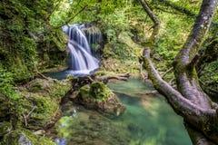 Cachoeira de Vaioaga do La, Rom?nia fotografia de stock royalty free