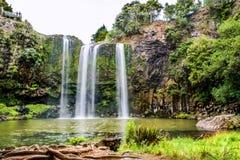 A cachoeira de Whangerei imagem de stock royalty free