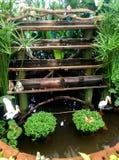 Cachoeira decorativa do pássaro do jardim Fotos de Stock