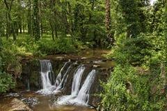 Cachoeira, DES Maures do maciço, Provence Imagens de Stock