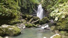 Cachoeira do Amazonas com rochas e plantas fotografia de stock