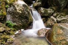 Cachoeira do córrego da montanha Imagens de Stock Royalty Free