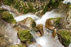 Cachoeira do córrego da montanha Imagem de Stock