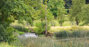 Cachoeira do córrego em Inglaterra ocidental sul Imagens de Stock