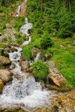 Cachoeira do cavalo em Romênia Fotografia de Stock Royalty Free