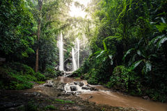 Cachoeira do Fahrenheit de Mork Fotos de Stock