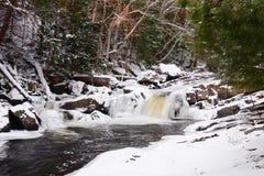 Cachoeira do inverno Fotos de Stock Royalty Free