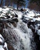 Cachoeira do inverno Imagens de Stock