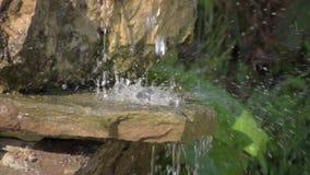 Cachoeira do jardim das pedras volume de água através da pedra O sol da manhã brilha na cachoeira video estoque