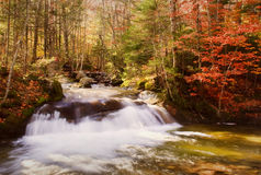 Cachoeira do outono Fotografia de Stock