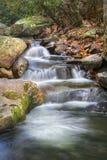 Cachoeira do outono Imagem de Stock Royalty Free