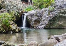 Cachoeira do quintal Imagens de Stock