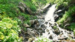 Cachoeira do rio da natureza filme