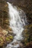 Cachoeira dramática, poderosa, ensolarado Pilj da floresta fotografia de stock royalty free