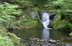 Cachoeira e associação Imagem de Stock Royalty Free