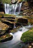 Cachoeira e córrego Imagem de Stock