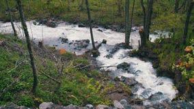 Cachoeira e córrego nas montanhas de Geórgia filme