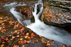 Cachoeira e folhas de outono foto de stock royalty free