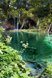 Cachoeira e lago Foto de Stock Royalty Free