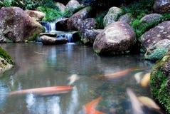 Cachoeira e paisagens Imagem de Stock