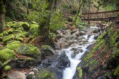 Cachoeira e passagem da garganta de Uvas foto de stock