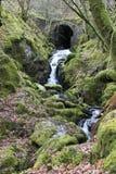 Cachoeira e ponte pequenas, foto de stock