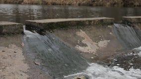 Cachoeira e rio pequeno entre a natureza vídeos de arquivo