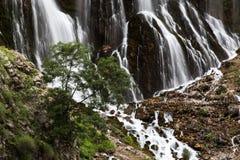 A cachoeira e rive no montanhês Imagem de Stock Royalty Free